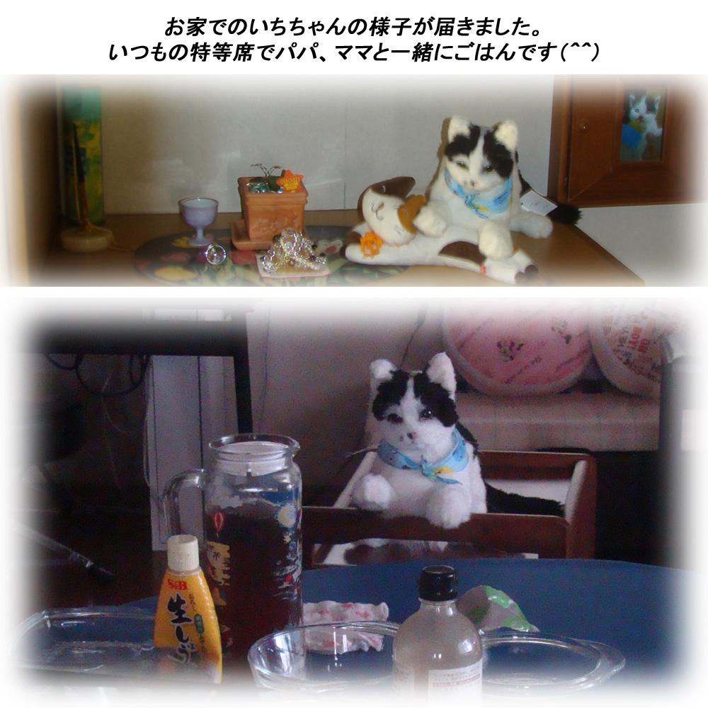 140901ichi-4.jpg