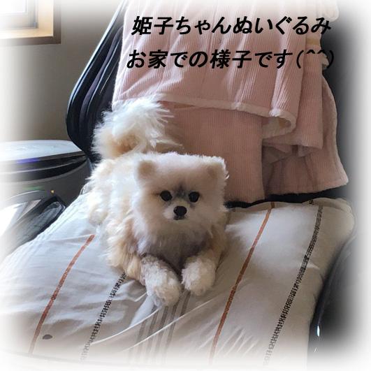 160526himeko-4.jpg