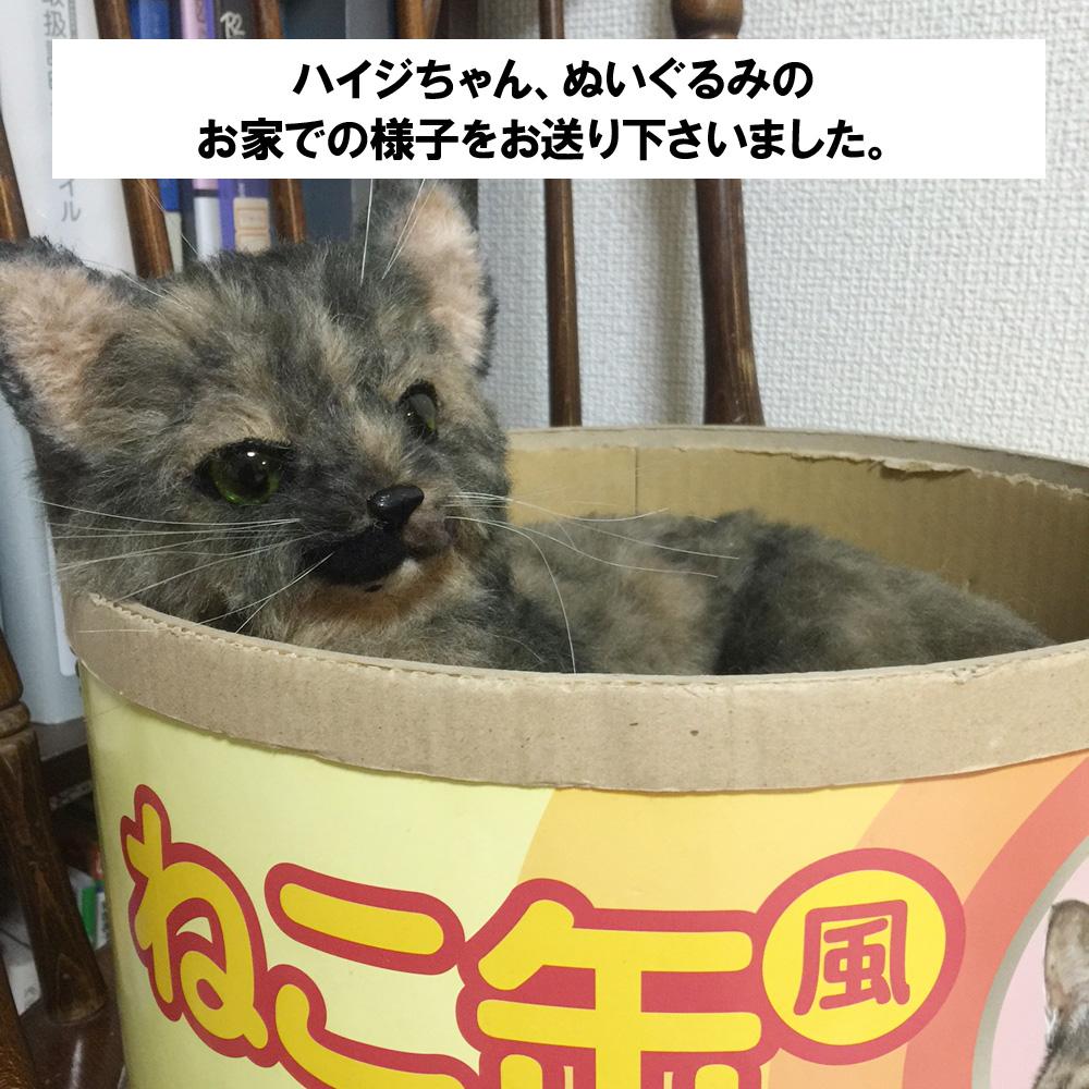 160817haiji-2.jpg